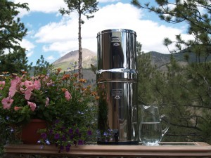 Crown Berkey Water Purifier